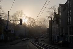 0°C (mkniebes) Tags: street autumn mist cars fog zeiss germany wire sad foggy tram contact bochum overhead dull contrejour trist gegenlicht counterlight planart1450 zf2 hattingerstrase