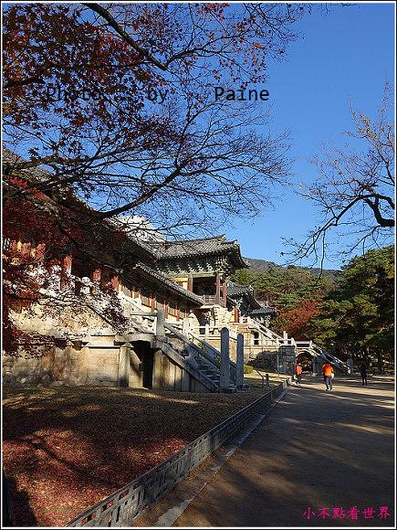 慶州佛國寺 (74).JPG