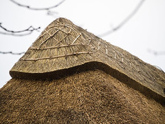 Decorative thatched ridge detail (fstop186) Tags: new roof reed decorative ridge blocked thatch