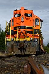 1803 reflections (caltrain927) Tags: railroad reflection ex oregon train portland or rail sp western local freight mcminnville emd gp9 gp9r