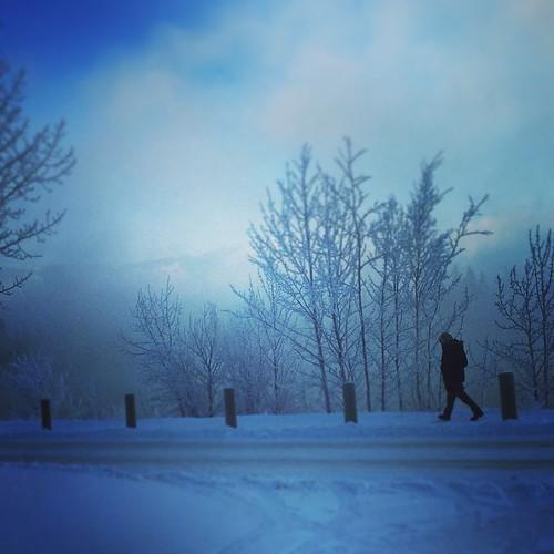 Icy stroll by #Yukon River at -30C #yxy