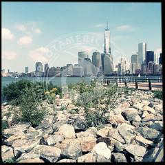NEWYORK-1382