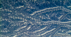 Ghiaccio (JackTorva) Tags: winter italy white ice italia fiat blu natura 500 inverno bianco freddo ghiaccio