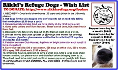 thanksgiving dog dogs virginia wishlist help animalrescue fundraiser animalsanctuary donate animalrefuge rapidan rikkisrefuge dogswishlist