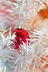 Shiny Wonderland (Lorelei Bleil) Tags: christmas winter red white holiday tree holidays bokeh ornament wonderland magical whimsical