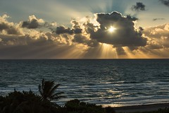 335_Huevolinio.12.01.2014 (Miguel Reinfeld (Mijaelo)) Tags: ocean seascape birds clouds sunrise canon florida markiii hollywoodbeach cloudsstormssunsetssunrises