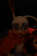 dark bunny (stellamaris61) Tags: lilycat loonette