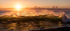 Doing the Wave (Kristin Repsher) Tags: sunrise nikon df waves australia pacificocean queensland goldenhour coolangatta snapperrocks rainbowbay southeastqueensland