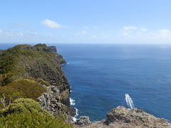 Coastline from Malabar Hill to Kims Lookout (Red Nomad OZ) Tags: australia newsouthwales lordhoweisland ballspyramid