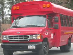 Red Hook CSD #G-15 (ThoseGuys119) Tags: vision bluebird fe schoolbus redhookny redhookcsd
