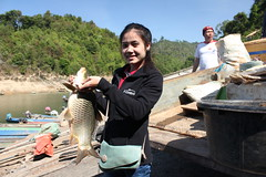 Laos Fisheries