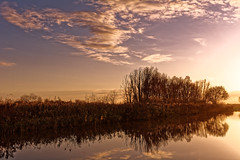 At The End It's Only Light That Counts (Alfred Grupstra Photography) Tags: trees light sky reflection water clouds reflections landscape nikon sundown nederland nl noordholland d7100 oostwoud