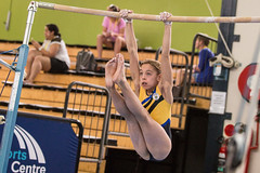 Gymnastics - Lake Macquarie ICG 2014 (LightMagicImages) Tags: world carnival friends people opportunity horse sports sport bar training interesting jump community friendship floor exercise glendale spin contest young australia competition skills games bodybuilding beam mat rings gymnastics talent agility nsw effort balance strength handstand vault recreation athletes workout common parallel better height contribution fit tumbling lakemacquarie alliance acceptance possibilities acrobatic opportunities uneven participation wellbeing competitive inclusive inclusion 2014lmicg vivianhayles