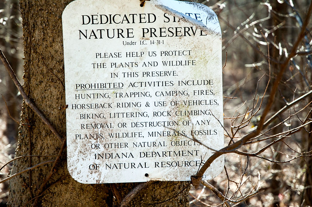 Kramer Original Woods Nature Preserve - January 5, 2015