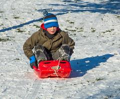 Bruxelles - Parc Georges-Henri dcembre 2014 (saigneurdeguerre) Tags: brussels 2 snow canon europa europe belgium belgique mark iii nieve sneeuw belgi bruxelles neve 5d neige brssel brussel belgica parc bruxelas georges henri belgien 2014 sintlambrechtswoluwe woluwesaintlambert