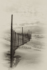 Long Point Beach 7 (a56jewell) Tags: winter snow beach jan longpoint snowfence 2015 longpointbeach a56jewell