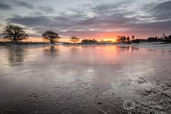 Frozen Sunrise - Mogshade New forest (Christopher Pope Photography) Tags: sky sun mist lake fog sunrise countryside frozen frost hampshire freeze sunburst newforest singletree 2014 bratleyview sunburts treespond mogshade