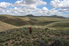 We now drop back down into Painted Canyon (rozoneill) Tags: lake oregon river carlton butte desert hiking painted canyon vale trail backpacking saddle blm uplands owyhee honeycombs