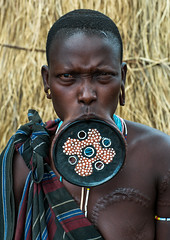 A mursi tribeswoman wearing a traditional lip-plate, Omo valley, Mago park, Ethiopia (Eric Lafforgue) Tags: africa portrait people woman color vertical outdoors nationalpark women african culture tribal ornaments clay blackpeople omovalley extended ethiopia tribe disc bodyart mago bizarre mursi enlarged oneperson adornment hornofafrica ethiopian eastafrica abyssinia expanded onepersononly blackskin adornments onewomanonly lookingatcamera loweromovalley tribeswoman waistup 1people mursitribe indigenousculture africanculture lipplug ethnicgroup lipplate magopark liphole onematureadultonly enlargedearlobe enlargedear ethio162210