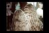 ss23-63 (ndpa / s. lundeen, archivist) Tags: girls people color film boston hair women massachusetts nick longhair slide blond blonde slideshow mass 1970s bostonians bostonian dewolf youngwomen early1970s nickdewolf headofhair photographbynickdewolf slideshow23