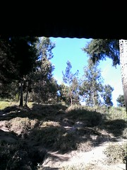 "Pengembaraan Sakuntala ank 26 Merbabu & Merapi 2014 • <a style=""font-size:0.8em;"" href=""http://www.flickr.com/photos/24767572@N00/27162961125/"" target=""_blank"">View on Flickr</a>"