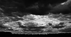 Alone in a field. (Stephen-Oakes) Tags: skyline clouds contrast dark cloudy darksky