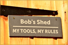 NEW SHED NEW RULES (2) (bobspicturebox) Tags: wood blue glass birds tits pigeon starling deer stained roe pecker blackcaps