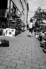 Hobe Yannic-0491 141365-9 (yhobe63) Tags: lalouvire photosderue