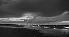 (mintimages) Tags: blackandwhite beach wind turbine omd