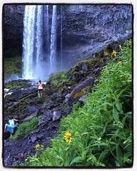 feeling very small |  #tamanawasfalls #mthood #oregon #oregonnw #outdoorswithnature exploregreatnes#exploregreatnessexploregreatness  #adventure #pnwonderland #pnwhikers #nature #beauty #pnwisbeautiful #oregonexplored #explore #optoutsi (marisasantacroce) Tags: nature beauty oregon adventure explore mthood tamanawasfalls outdoorswithnature oregonnw oregonexplored pnwonderland optoutside pnwisbeautiful pnwhikers exploregreatnes exploregreatness