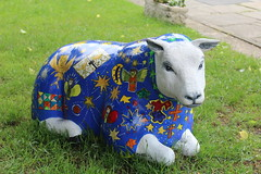 Photo of Wrexham Sheep