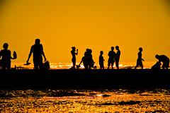 Beach Life (leopc.lin) Tags: pro 300 naf 2x kenko teleplus