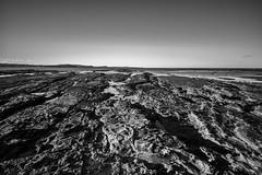 M1150823-Edit.jpg (meerecinaus) Tags: longreef beach collaroy newsouthwales australia au