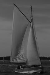 bac  voile Prsident Pierre Mallet (lignesbois) Tags: bateau voile sail ship bassin arcachon gironde aquitaine mer pentax km