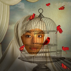 Visiting Day (jaci XIII) Tags: cardeal pssaro gaiola mulher pessoa surrealismo cardinal bird cage woman person surrealism