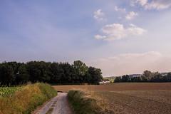 Waterloo-Lasnes 2016 (saigneurdeguerre) Tags: canon 5d mark iii 3 europe europa belgique belgi belgium belgien belgica ponte antonioponte aponte ponteantonio saigneurdeguerre wallonie brabant wallon waterloo lasnes
