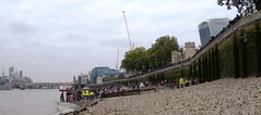 A very busy foreshore! (Thames Discovery Programme) Tags: thamesdiscoveryprogramme toweroflondon riverthames london community archaeology foreshore fth01