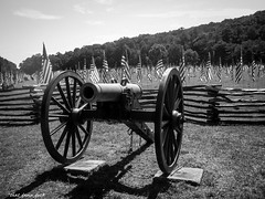 The Cannon (that_damn_duck) Tags: cannon civilwar graves heros solders flags americanflag history bw memorial blackwhite