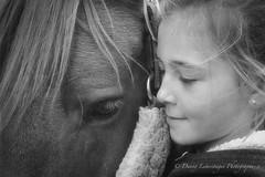 Forever friends (Danny Lamontagne) Tags: horse friends friendship amiti animale animal cheval noiretblanc blackandwhite ami