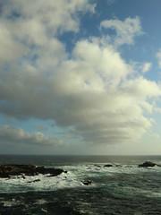 Pt Lobos 34 (Ted Tamada) Tags: nature landscape casio pointandshoot casioexilim ptlobos exilim statereserve californiastatereserve tedtamada tedtamadaphotography ptlobosstatenaturalreserve