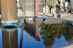 Reflections (malinowy) Tags: winter japan 35mm temple nikon buddhist nippon nikkor zima narita naritasan honshu shingon japonia swiatynia malinowy d7000 shinshōji malinowynet