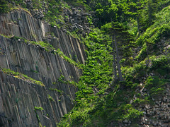 columnar basalt formations at Cape Stolbchaty - kunashir island (kuril island chain) 8 (Russell Scott Images) Tags: kunashirkunashiriisland kurilkurileislands volcanicarchipelago pacific columnarbasaltformations capestolbchaty russia russianfareast pacificringoffire кури́льскиеострова́ kurilskieostrova kurirurettō russellscottimages