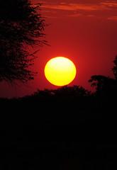 DSC_0210 (stephanelhote) Tags: portraits enfants paysages etosha okavango flore fleuve afrique faune namibie zambie himbas zambèze