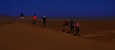 2014-11-19 (Gim) Tags: desert dunes morocco maroc sanddunes marokko marocko  dunesdesable almaghrib rken sudmaroc sanddyn southernmorocco gim southmorocco knen guillaumebavire  essahel ergessahel sandklit