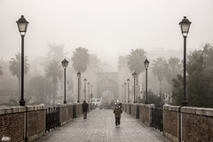 Puerta Palma (Alex Nozop Foto) Tags: alex fog puente badajoz niebla peatonal nozop