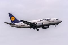 D-ABIA Lufthansa Boeing 737-530 @ Frankfurt (EDDF) arriving from Stavanger (ENZV) / 27.11.2014 (oliver.holzbauer) Tags: boeing lufthansa b737 planespotting boeing737 eddf planespotter dabia