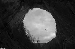 La vie ne tient qu'à un Fil - Descente de 120M en rappel du porche de la grotte Sarrazine (francky25) Tags: en de anne la sainte noir fil du ne un et rappel blanc porche franchecomté grotte vie tient sous nans doubs quà descente 120m sarrazine