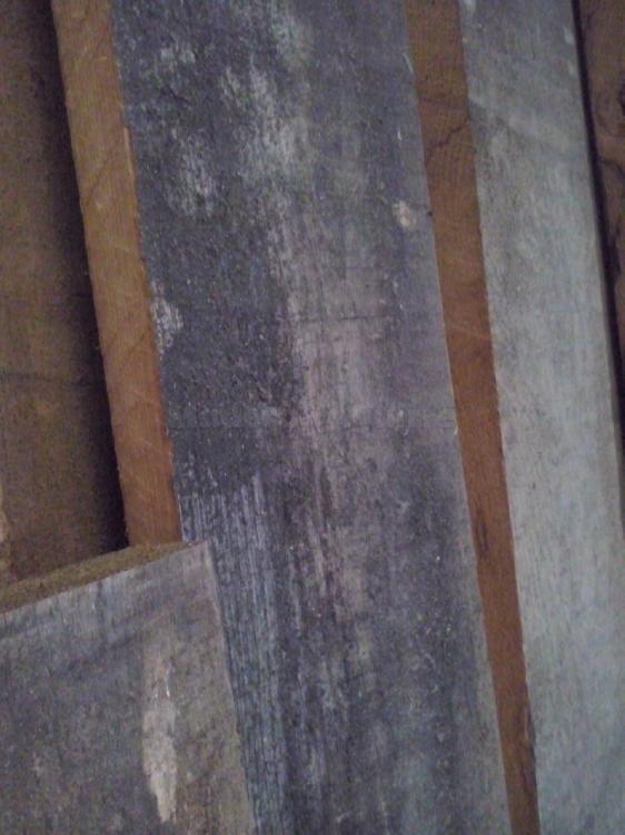 Tablon Roble europeo 27mm gris