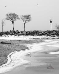 Light the way (_Matt_T_) Tags: winter bw snow ice pentax 85mm niagara lakeontario pm smc grimsby f20 fortycreek smcpm85mmf20 40creek k5iis singlechallenges sijan2015