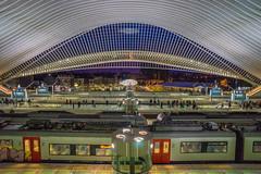 DSC05837 (Falcdragon) Tags: station architecture train belgium sony transport alpha liege a7 liège guillemins ilce7